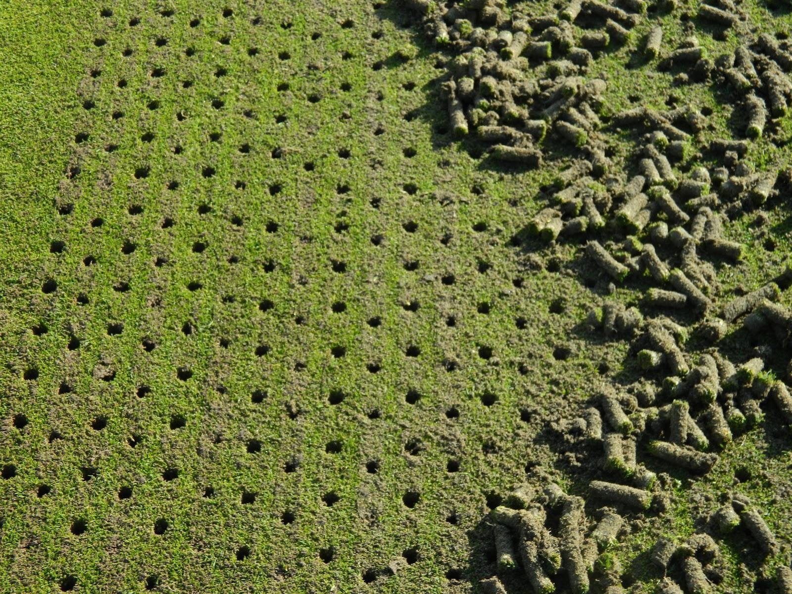 aerifikacia travnika